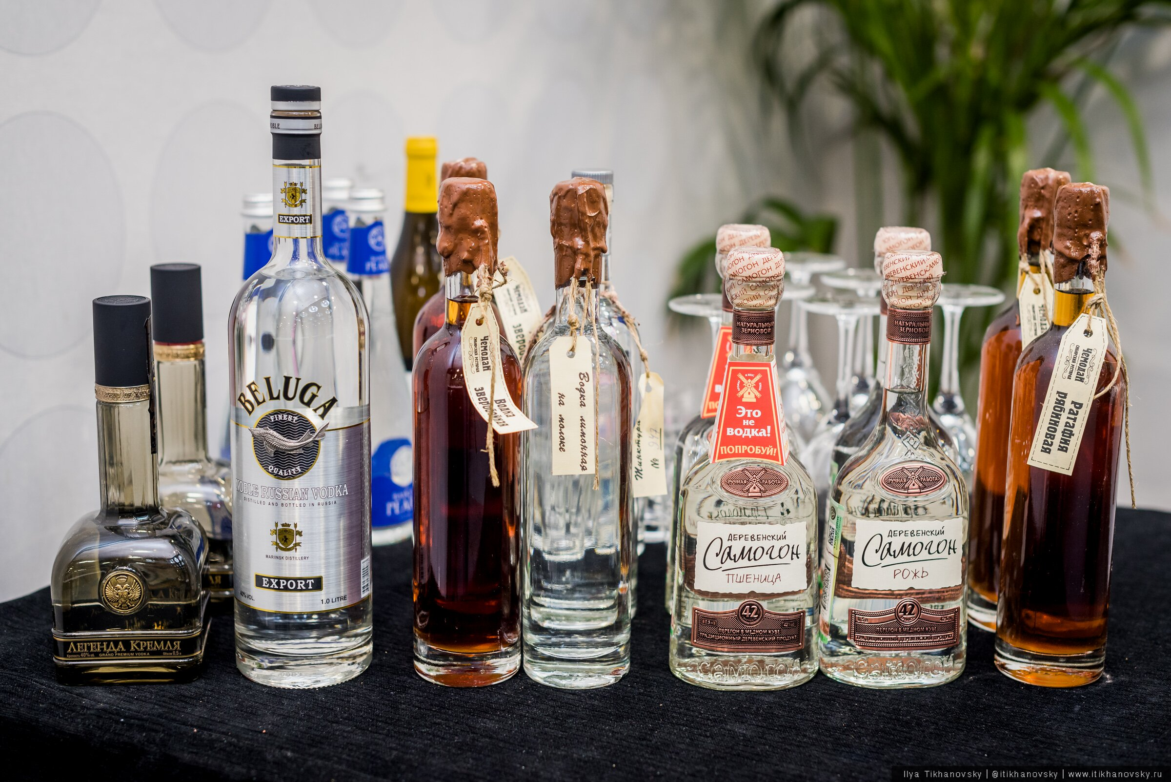 vodka13